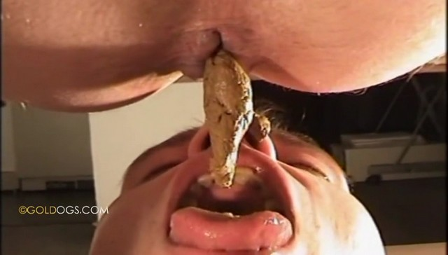 Shit Feeding - Goldogs - Gay Foot Fetish, Piss, Scat-1496